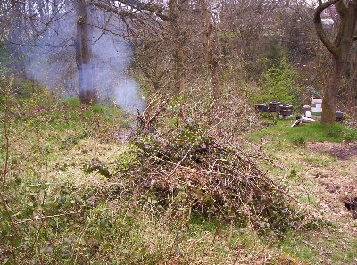 Some of the excess brambles cleared as part of Workday 18/4/10 showing the beehives in the background.